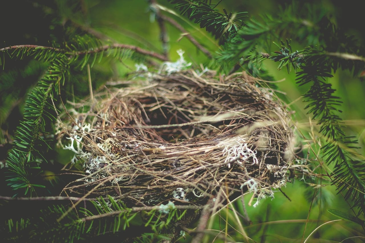 empty-nest-remodel-sell-home